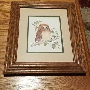 Custom Framed Double Matted Owl Picture